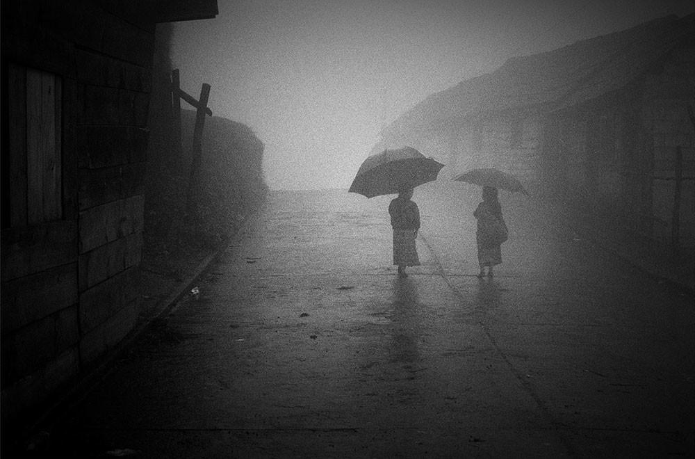 The Dreaming (Yasuhiro Ogawa)