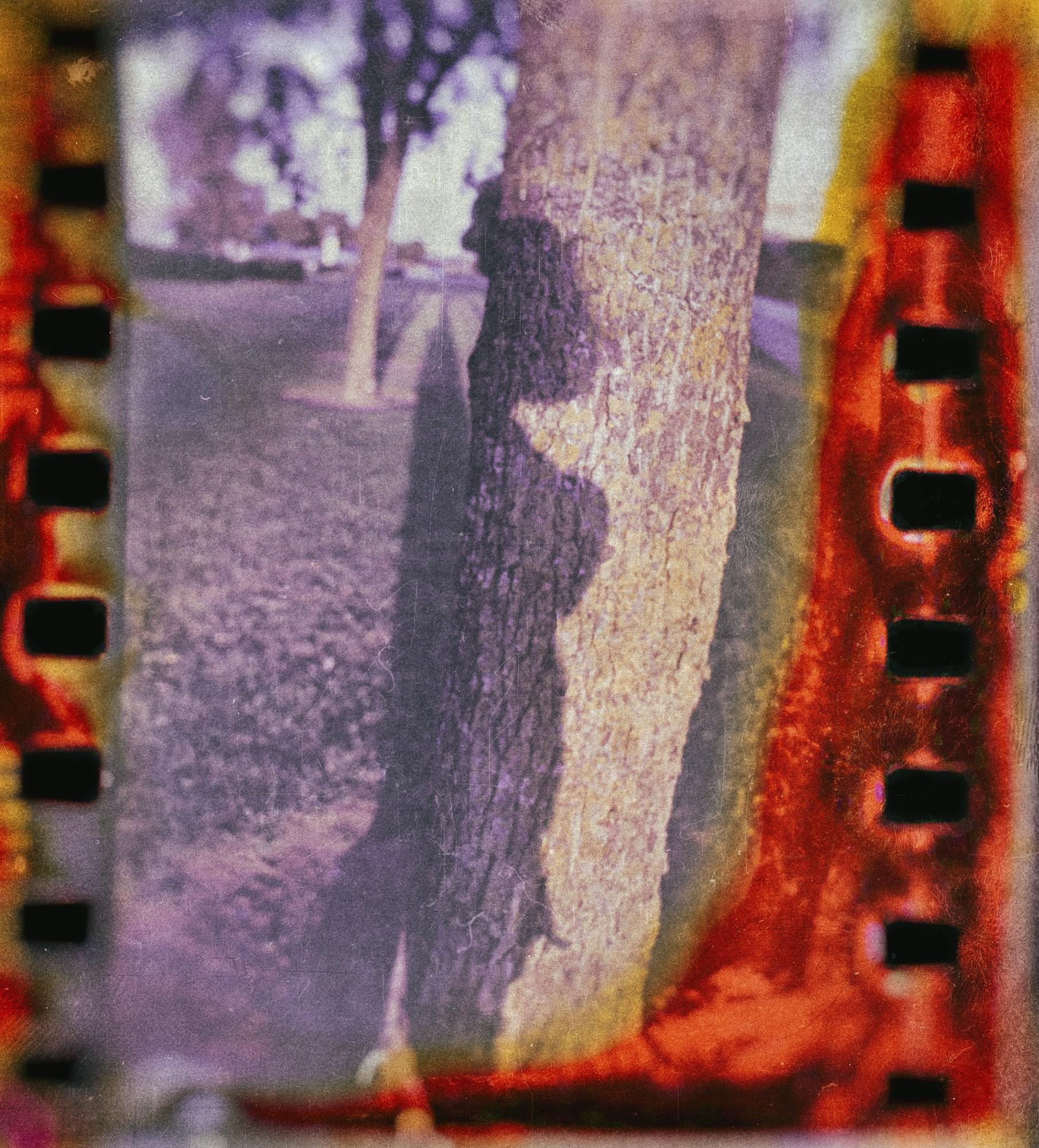 Fotosensibles Proyecto fotográfico analógico. Autorretrato.